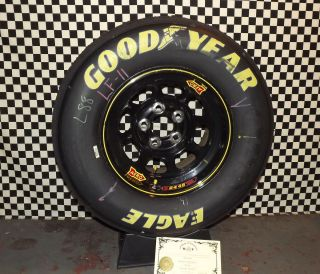 Dale Earnhardt Jr Phoenix 11 2012 NASCAR Used Tire Rim