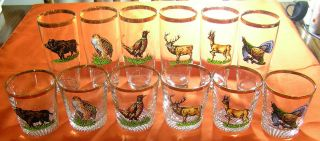 Wildlife Animals Bear Deer Elk Quail Turkey Drinking Beverage Glasses