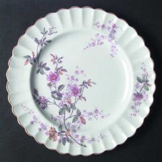 Spode Roberta Orange (Scallop) Dinner Plate, Fine China Dinnerware   Pink/Lavend