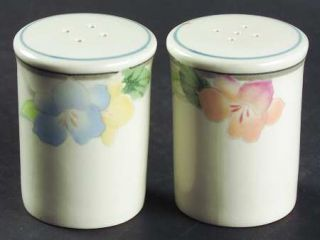 Mikasa Garden Poetry Salt & Pepper Set, Fine China Dinnerware   Intaglio Line, P