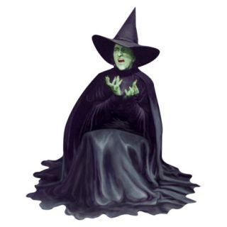 Paper House WICKED WITCH