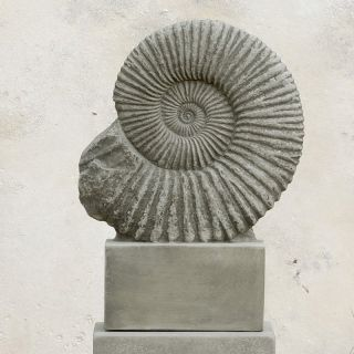 Campania International Ammonite Cast Stone Garden Statue   S 275 AL