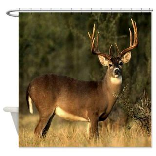Big Buck Deer Shower Curtain  Use code FREECART at Checkout
